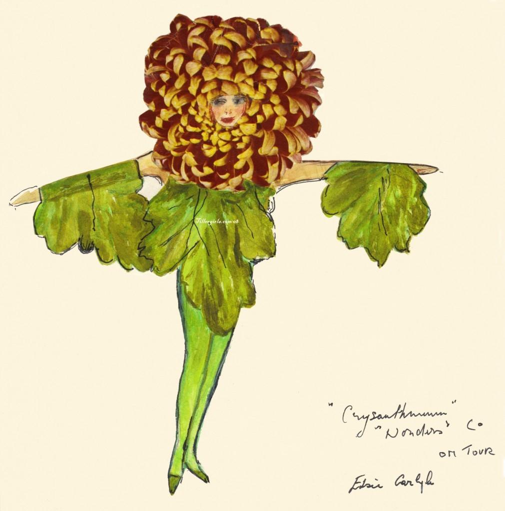 costume3 Wonders Chrysanthemum Cleaned